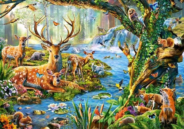 Forest Life - 500pc jigsaw puzzle