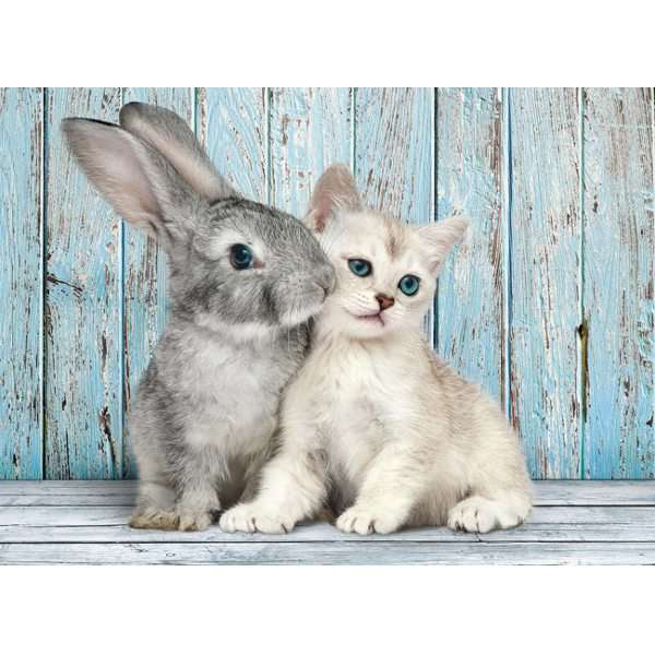 Cat and Bunny - 500pc jigsaw puzzle
