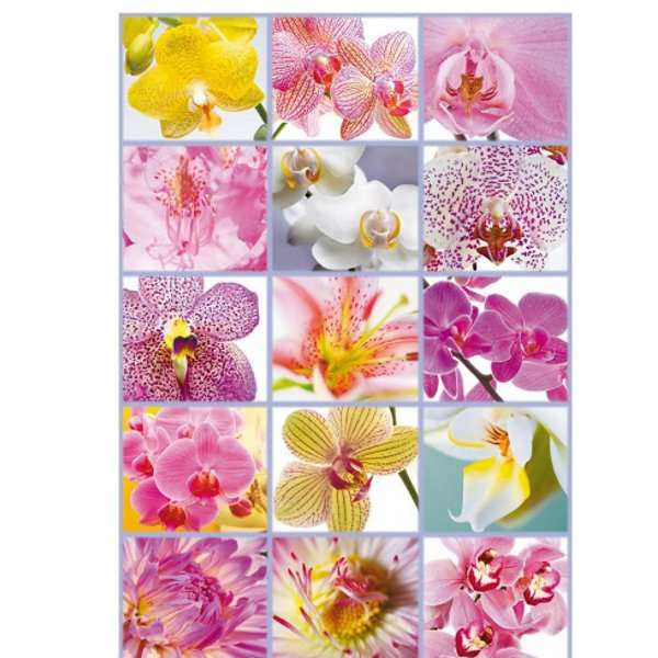 Collage of Flowers - 1500pc jigsaw puzzle