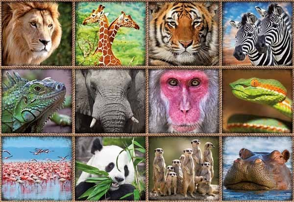 Wild Animal Collage - 1000pc jigsaw puzzle