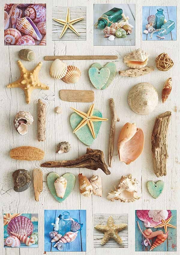 Collage of Seashells - 1000pc jigsaw puzzle