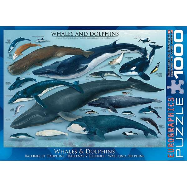 Whales & Dolphins jigsaw puzzle