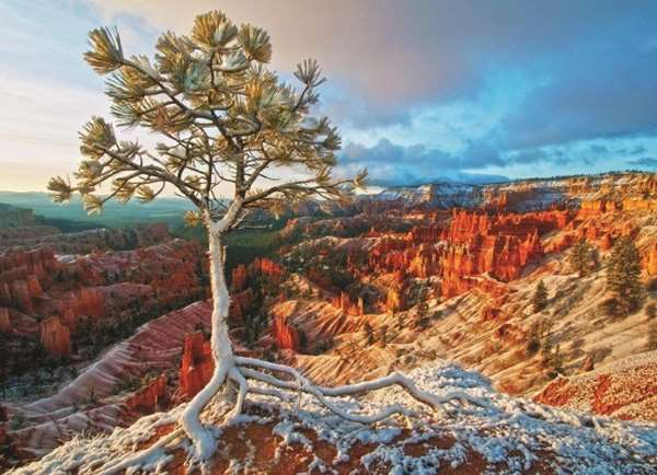 Grand Canyon - 1000pc jigsaw puzzle