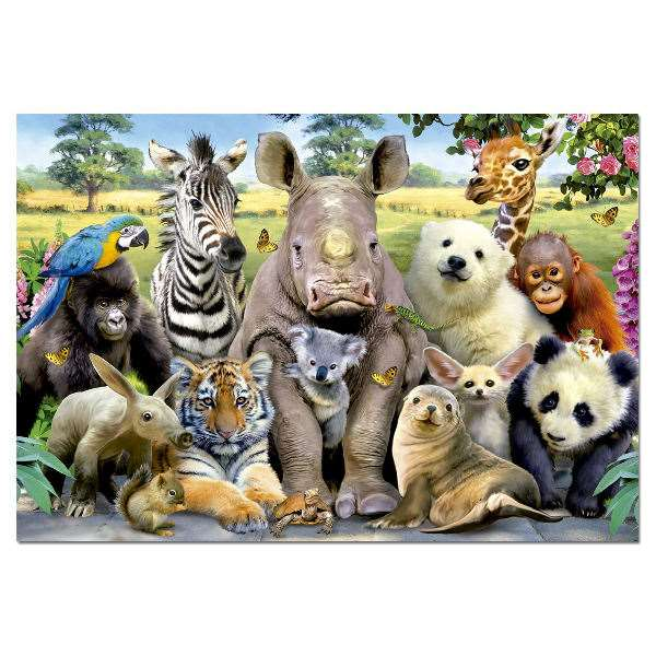 Its A Class Photo - 1000pc jigsaw puzzle