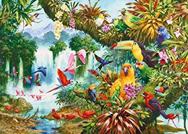 Exotic Friends - 1000pc jigsaw puzzle