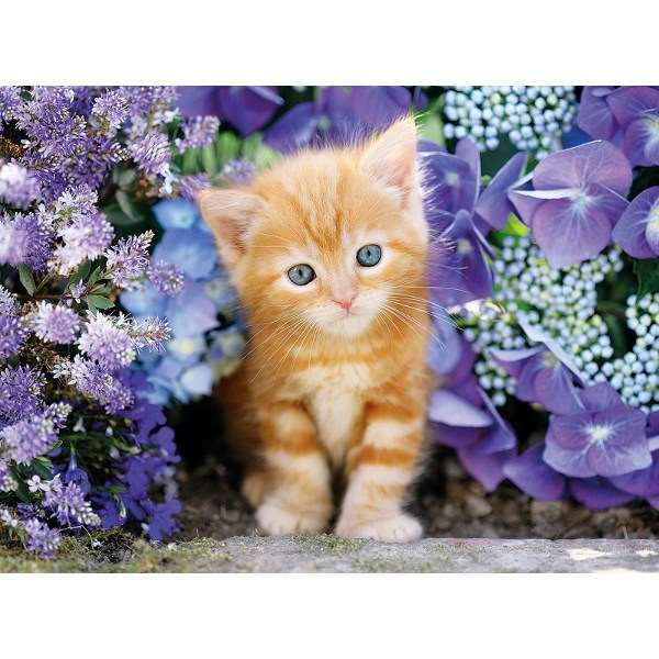 Ginger Cat in Flowers - 500pc jigsaw puzzle