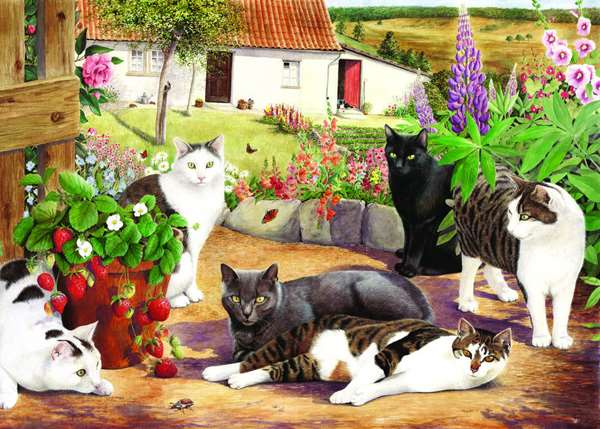 Cool Cats - Extra Large jigsaw puzzle