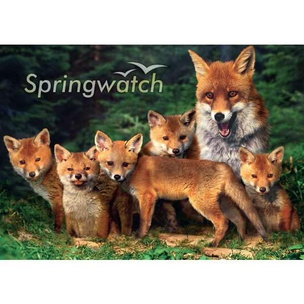 Spring Watch - 1000pc jigsaw puzzle