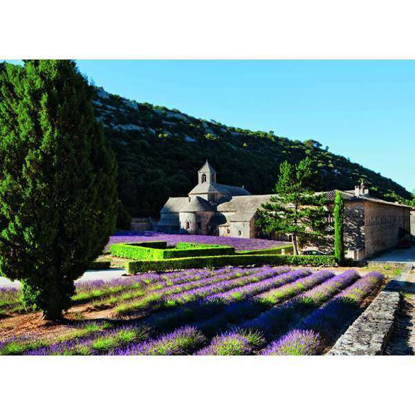 Provence - 1000pc jigsaw puzzle