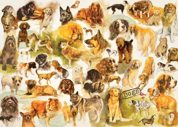 Dogs Poster - 1000pc jigsaw puzzle