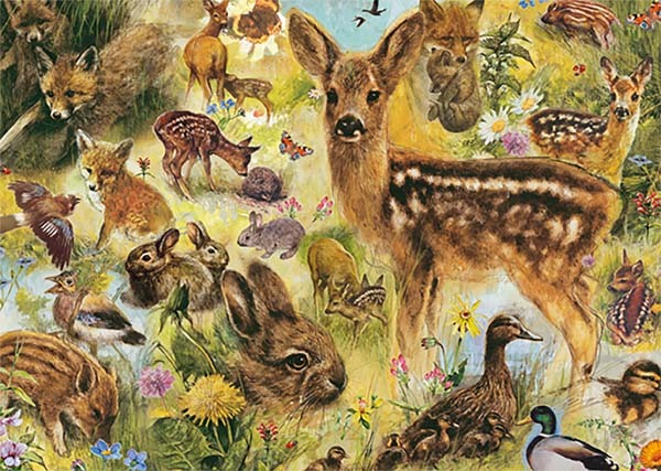 Young Wildlife - Rien Poortvliet - 1000pc jigsaw puzzle