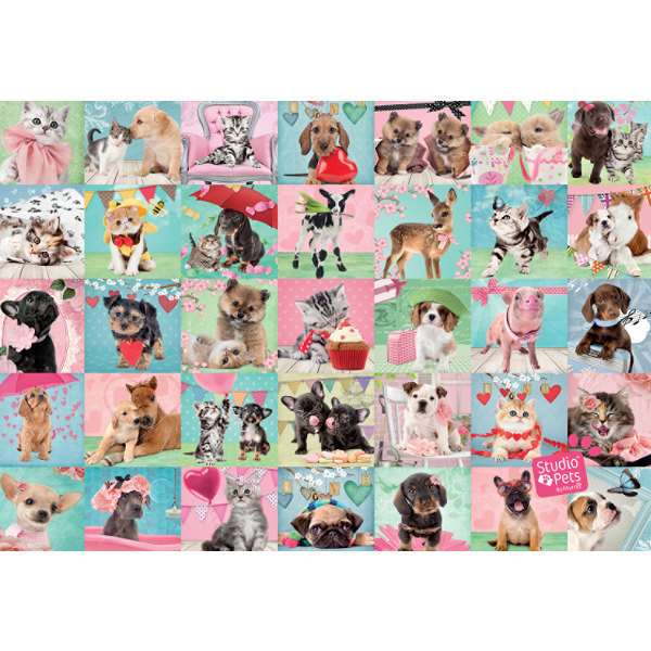 Studio Pets - Lovely Day - 1000pc jigsaw puzzle