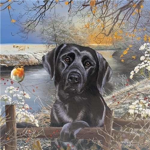 Black Labrador Frosty Morning 1000pc Jigsaw Puzzle From