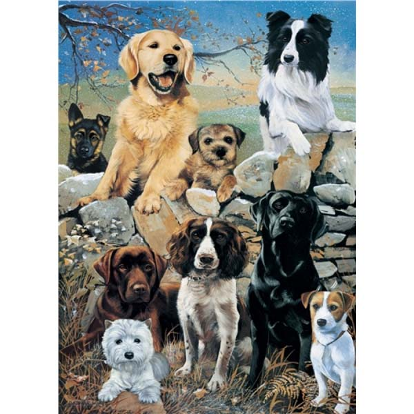 Mixed Dogs - The Look Out - 1000pc jigsaw puzzle