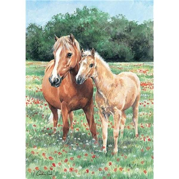 Mother and Foal - 1000pc jigsaw puzzle