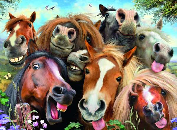 Selfies - No 1 - Horsing Around - 500pc jigsaw puzzle