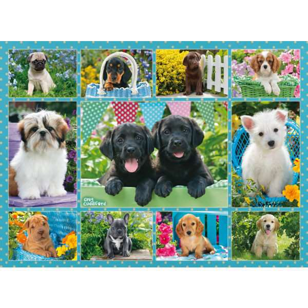 Cute Puppies - 500pc jigsaw puzzle