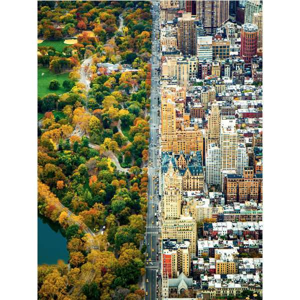 Divided City - New York - 1500pc jigsaw puzzle