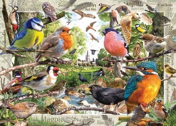 Our Feathered Friends - 1000pc jigsaw puzzle