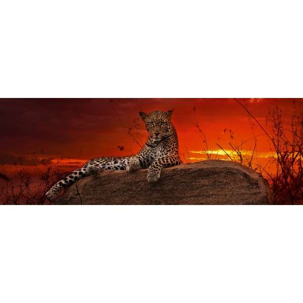 Red Dawn - 2000pc Panoramic jigsaw puzzle