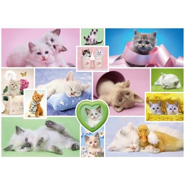 Cuddly Cats - 1000pc jigsaw puzzle