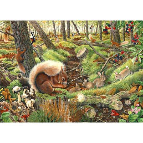 Save our Squirrels - 1000pc jigsaw puzzle