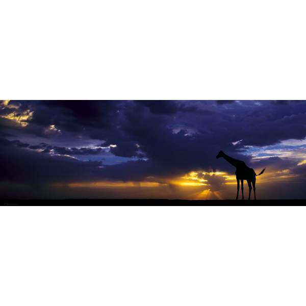 Sunset - 1000pc Panoramic jigsaw puzzle
