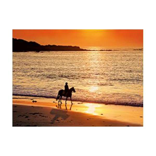 Walk at Sunset - 500pc jigsaw puzzle