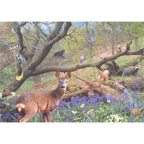 Bluebell Wood jigsaw puzzle