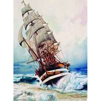 Black Pearl - 1000pc