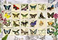 Butterfly Stamps - 500pc