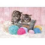 Kittens - Supercolour - 104pc