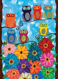 Small Owls - 500pc