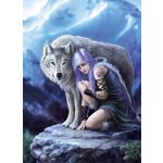 Protector - Anne Stokes - 1000pc