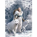 Anne Stokes - Winter Guardians - 1000pc