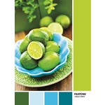 Juicy Limes - 1000pc