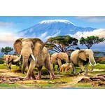 Kilimanjaro Morning - 1000pc