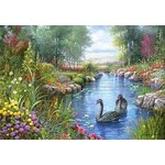 Black Swans - Andres Orpinas - 1500pc