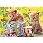 Tea Time - 500pc