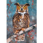 Great Horned Owl - 500pc