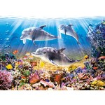 Dolphins Underwater - 500pc