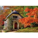 Gothic House in Autumn - 500pc