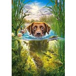 Swimming Dog - 500pc