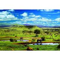 tsavo national park, kenya