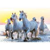 White Horses at Sunset - 1000pc