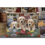 Puppies in the Luggage - 500pc