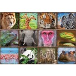 Wild Animal Collage - 1000pc