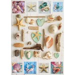 Collage of Seashells - 1000pc