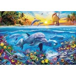 Family of Dolphins - 2000pc