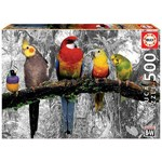 Birds in the Jungle - 500pc